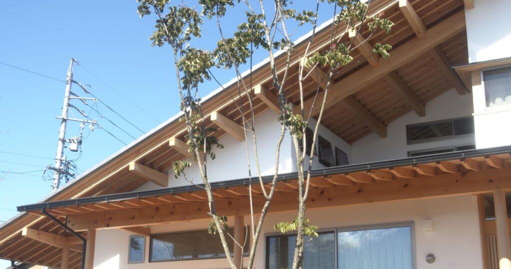 木の家のお庭